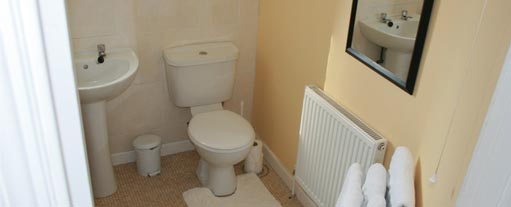 An image of a modern freshly renovated bathroom containing a shower, sink and toilet.